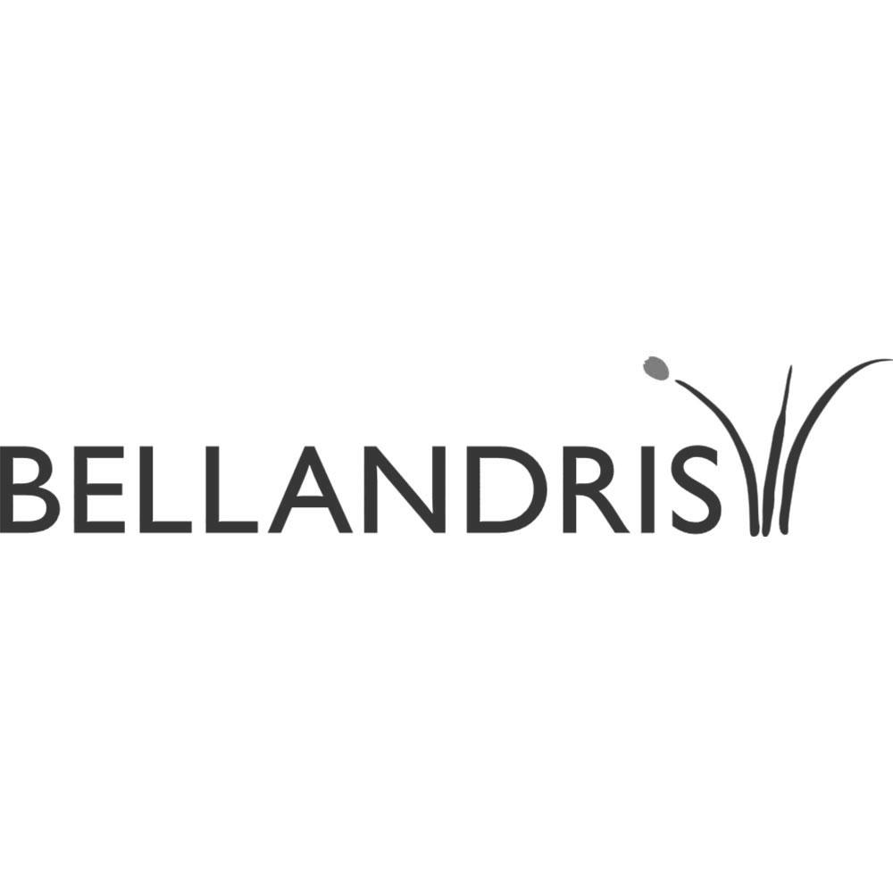 bellandries-2