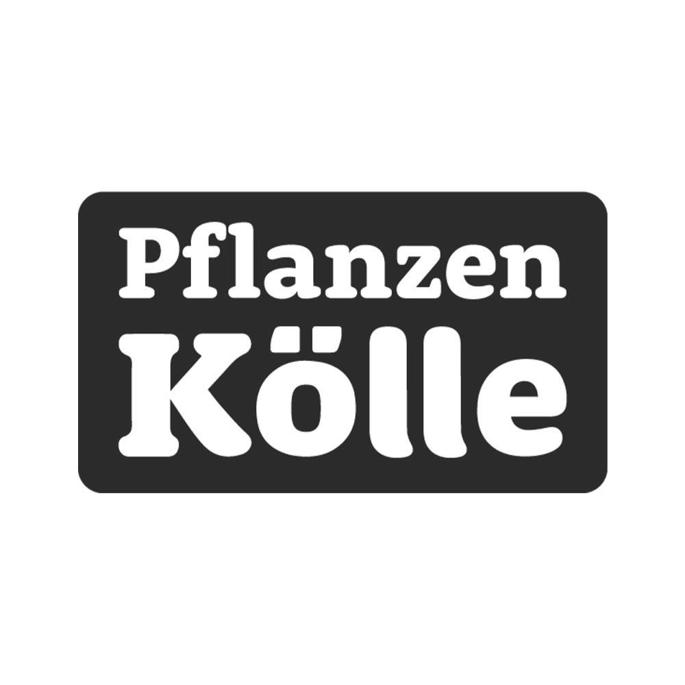 pflanzen_kölle